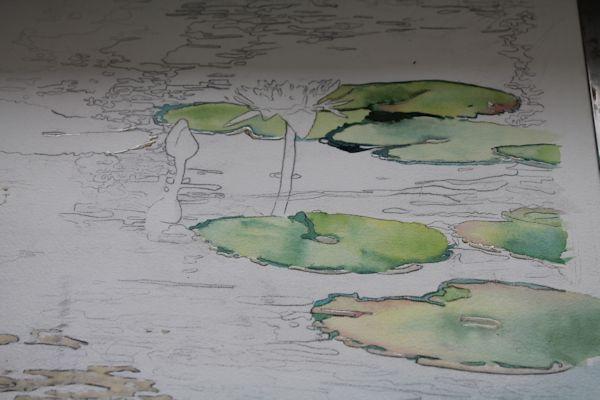 Рисуем кувшинки акварелью - шаг 5